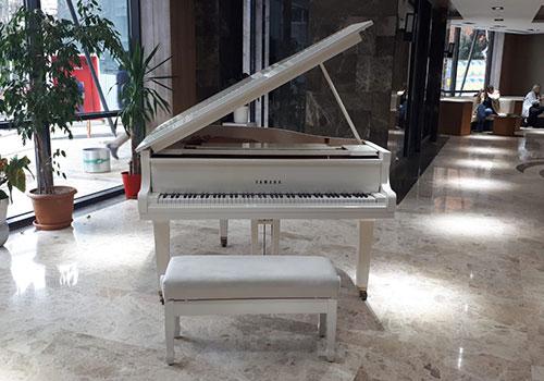 kuyruklu piyano taşıma
